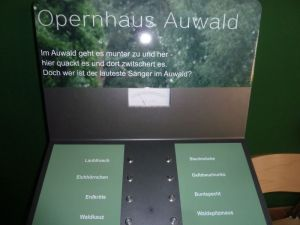 Wer ist der lauteste Sänger im Auwald?