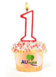 Die Plattform Auwald wird 1 Jahr alt!