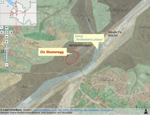 Rodung für das neue Dienstleistungszentrum in Thüringen. Nach der Urmappe 1857 (Vorarlberg Atlas) zeigt der helle Bereich den natürlichen Verlauf der Lutz und der braune Bereich den Auwald- und Überflutungsraum. Im Hintergrund scheint das Luftbild aus 2009 durch (siehe z.B. Hangar Fa. Wucher).