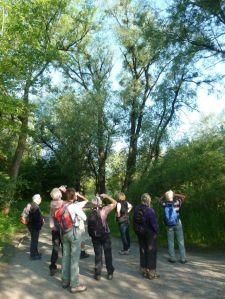 Exkursionsgruppe lauscht dem Vogelgesang.