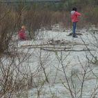 Ein Auwald wartet nur darauf von Kindern entdeckt zu werden
