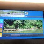 Informationen zum Ökosystem Fluss