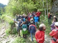 Über 50 Interessierte wanderten am 4.5.14 bei der Inatura-Exkursion ins Natura 2000 Gebiet Bregenzerachschlucht.
