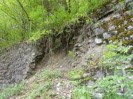 Eine alte Mauer zur Hangsicherung der ehemaligen Wälderbahntrasse wird nach 30 Jahren von der Natur zurückerobert.