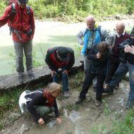 Auf der Suche nach der Gelbbauchunke. Sie ist Schutzgut des Natura 2000 Gebietes und liebt solche Tümpel auf der alten Trasse.
