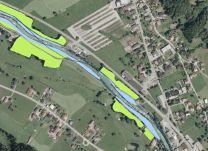 Auwaldkartierung aus der Auwaldstudie für den Bereich Zelfen (UMG 2014). Hellgrün=Eschen-Ulmen-Eichenwald (Hartholzau), hellblau=Grauerlenau (Weichholzau)