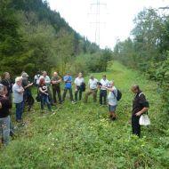 Anton Schneider von der Naturwacht erzälht über seine Erfahrung mit der Bekämpfung von Neophyten.