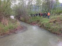 Cosenz - einer der wenigen Bäche, der unverbaut in den Rhein mündet
