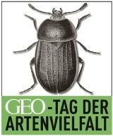 Logo_GEO-Tag_Internet